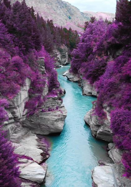 Vlies XXL-Poster Fototapete Natur & Blumen Fluss in Lila