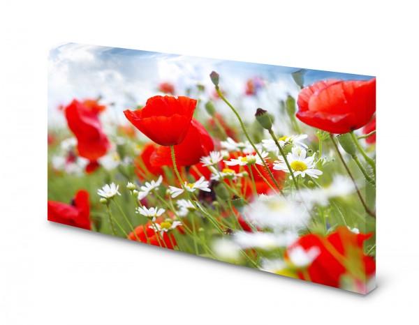 Magnettafel Pinnwand Bild Natur Mohnblumen Blumenfeld rot