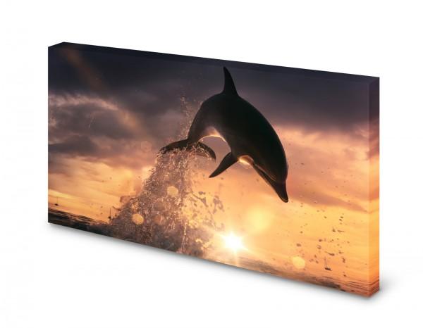 Magnettafel Pinnwand Bild XXL Delphin Ozean Meer XXL gekantet