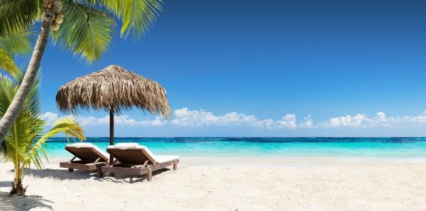 Magnettafel Pinnwand Bild XXL Panorama Palmen Karibik Meer