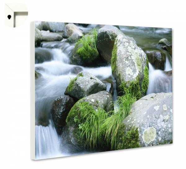 Magnettafel Pinnwand Natur Alles im Fluss