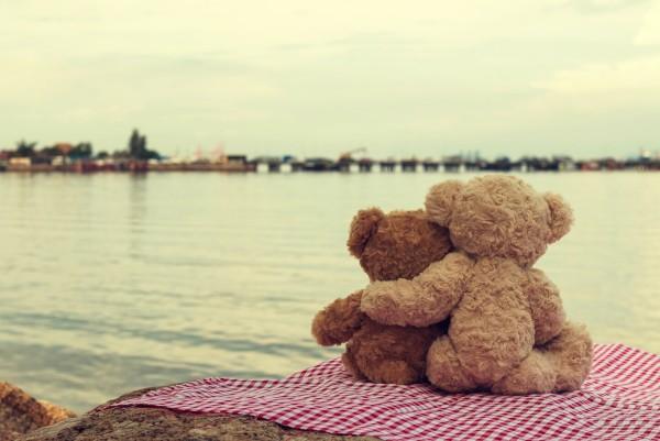 Magnettafel Pinnwand XXL Bild Teddy Love Liebe am See