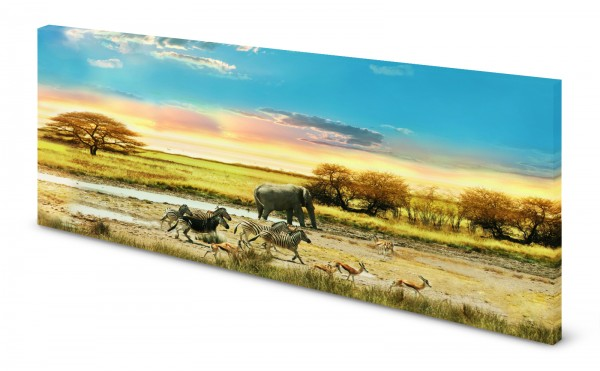 Magnettafel Pinnwand Bild Afrika Savanne Tiere Zebra Elefant gekantet