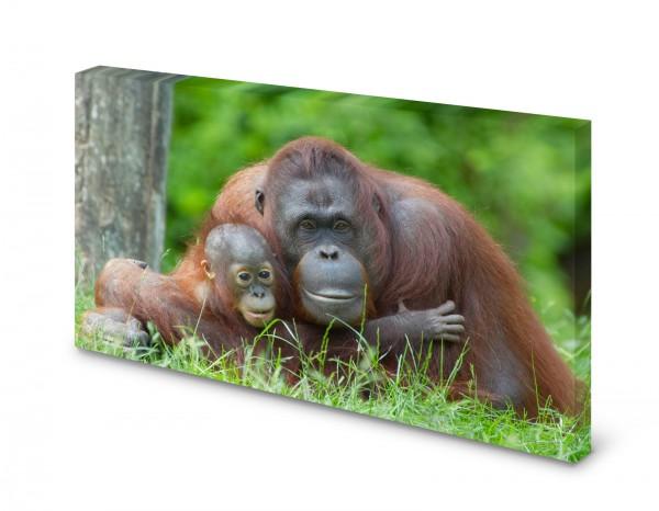 Magnettafel Pinnwand Bild Affe Orang Utan Mutter Baby gekantet