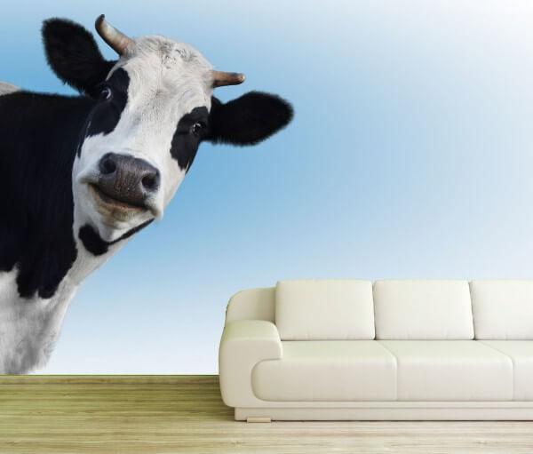 Poster Fototapete Tiere Schwarz Weiße Kuh