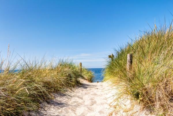 Magnettafel Pinnwand XXL Bild Strand Düne Strandweg
