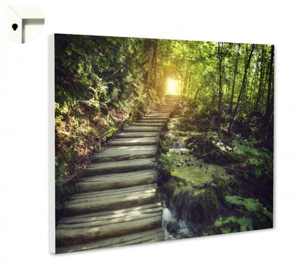 Magnettafel Pinnwand Natur Wald Treppe Lichtung