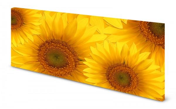 Magnettafel Pinnwand Bild Panorama Blumen Sonnenblumen gekantet