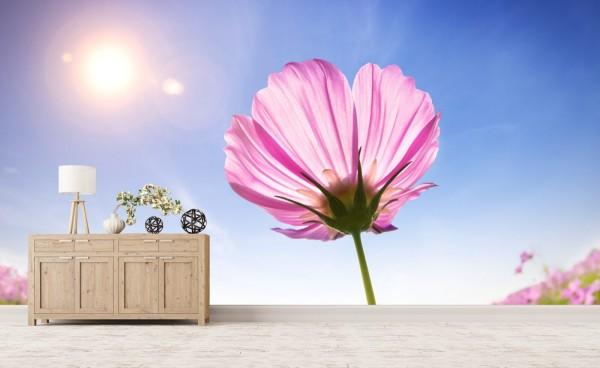 Vlies Tapete XXL Poster Fototapete Sommer Sonne Blume