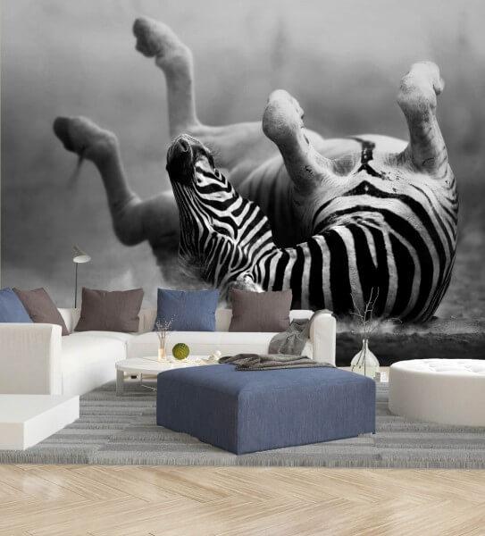 Vlies Tapete XXL Poster Fototapete Zebra Wellness Afrika