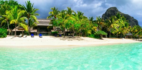 Magnettafel Pinnwand XXL Magnetbild Karibik Insel Palmen