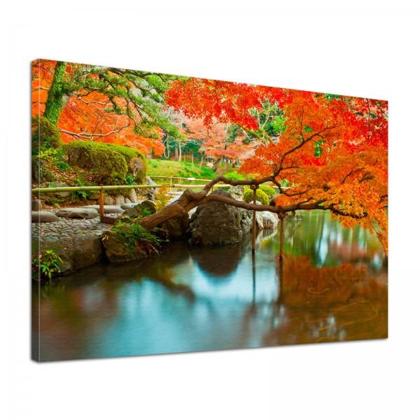 Leinwand Bild edel Natur Japanischer Garten