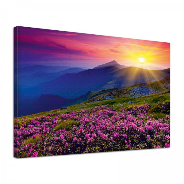 Leinwand Bild edel Natur Sonnenaufgang in den Bergen in lila