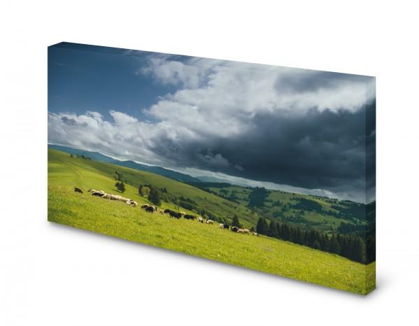 Magnettafel Pinnwand Bild Schafherde Schafe Berge Wiese Natur gekantet