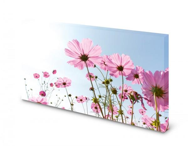 Magnettafel Pinnwand Bild Natur Blumen Himmel Sommer
