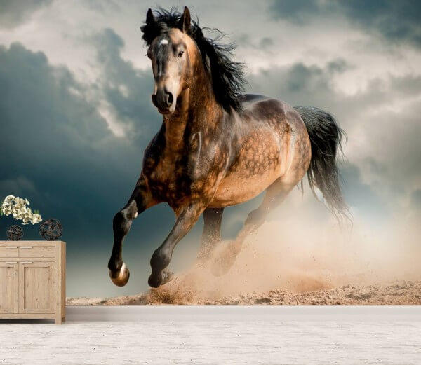 Vlies Tapete XXL Poster Fototapete Pferd wild Galopp