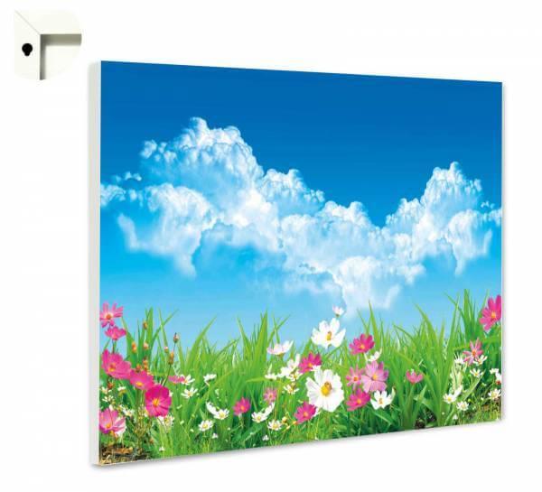 Magnettafel Pinnwand Natur Blumen & Wolkenhimmel