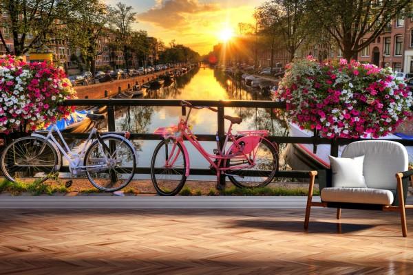 Vlies Tapete XXL Poster Fototapete Holland Fahrrad Blumen