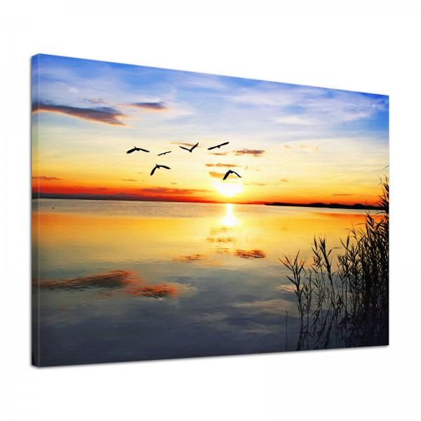 Leinwand Bild edel Natur Sonnenuntergang