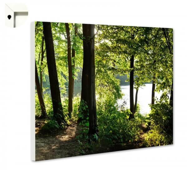 Magnettafel Pinnwand Natur Wald See