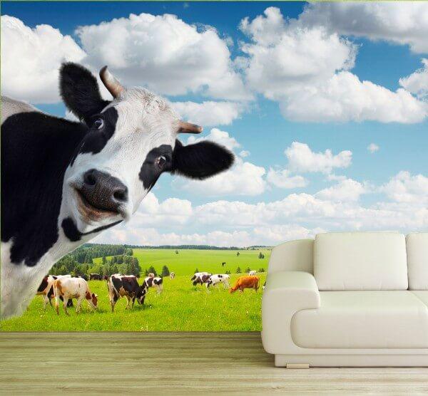 XXL Poster Fototapete Tapete Vlies Tiere Kuh und Herde