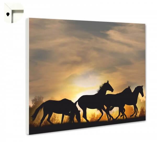 Magnettafel Pinnwand Tiere Pferde Herde im Sonnenuntergang