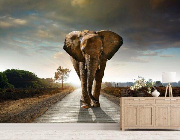 Vlies Tapete XXL Poster Fototapete Elefant Weg
