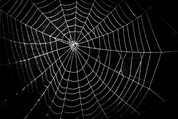 Magnettafel Pinnwand XXL Bild Spinnennetz Netz