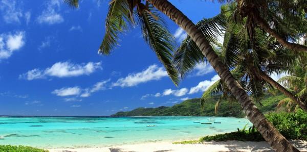 Magnettafel Pinnwand Bild XXL Panorama Insel Landschaft Strand