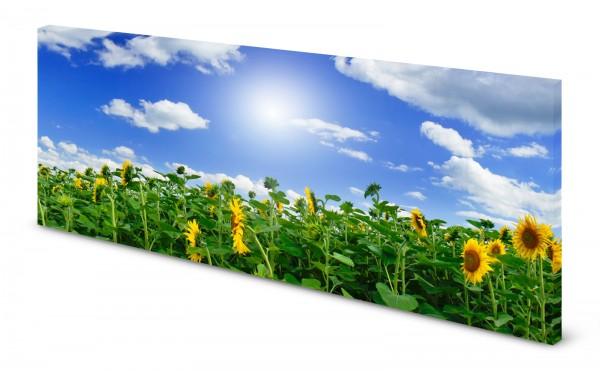 Magnettafel Pinnwand Bild Blumen Sonnenblumen Feld gekantet