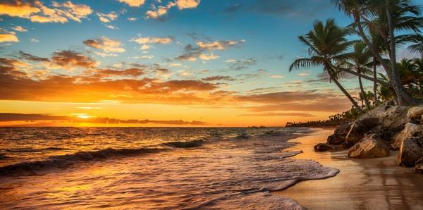 Magnettafel Pinnwand Bild XXL Panorama Palmen Sonnenuntergang