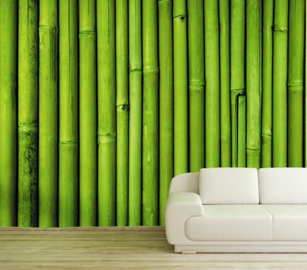 Vlies Tapete Poster XXL Fototapete Bambus Bambusstangen grün Natur
