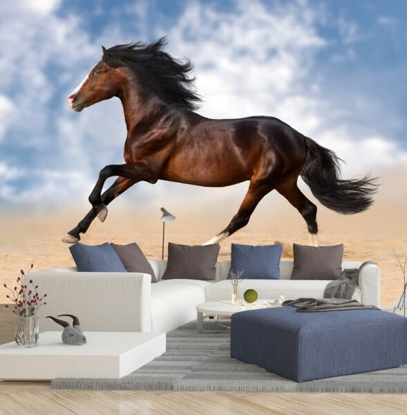Vlies Tapete XXL Poster Fototapete Pferd Galopp Sommerhimmel