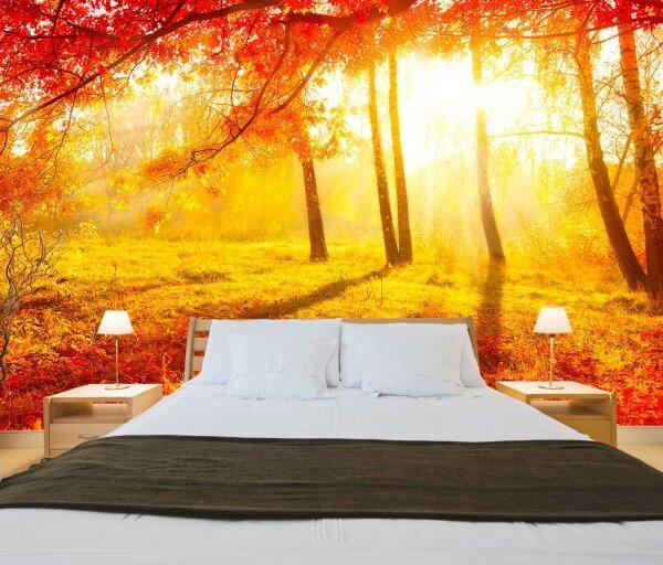 Vlies XXL-Poster Fototapete Natur Indian Summer in orange und gelb