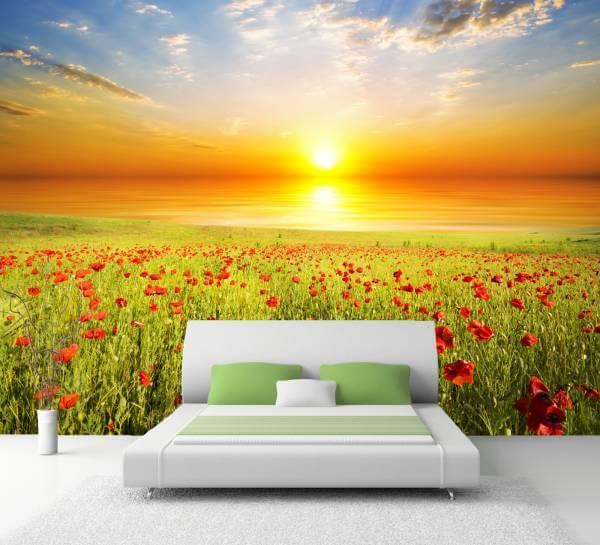 XXL Poster Fototapete Tapete Vlies Natur Mohnblumen Wiese im Sonnenaufgang