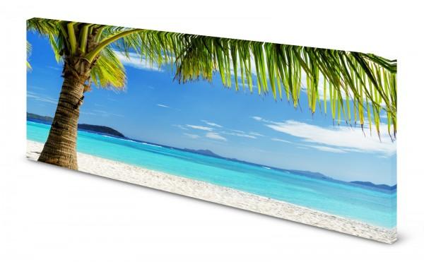 Magnettafel Pinnwand Bild Palmen Strand Insel gekantet