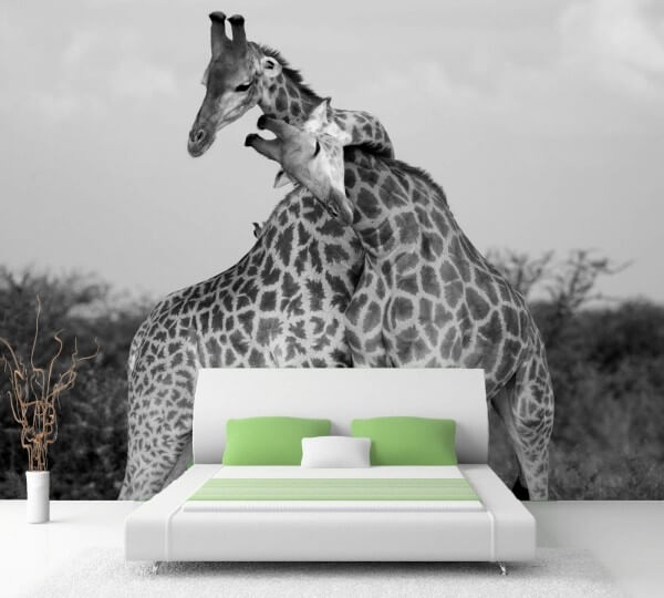 Vlies Tapete XXL Poster Fototapete Giraffe Love