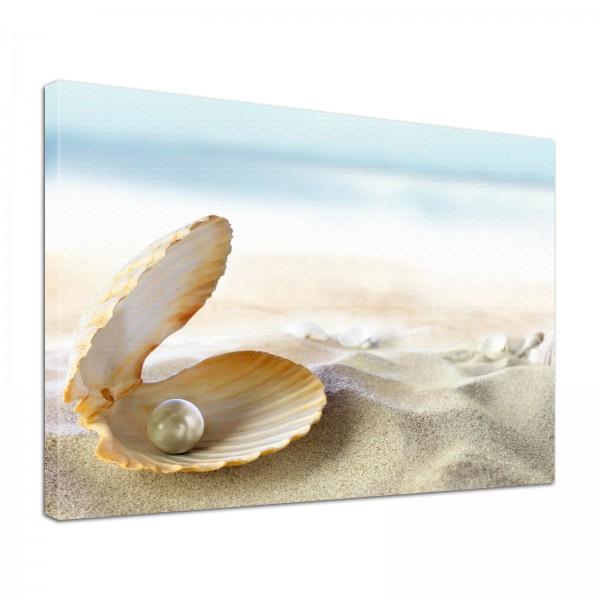 Leinwand Bild edel Natur Perle am Strand