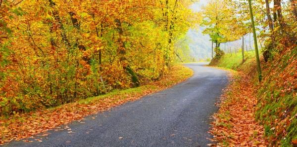 Magnettafel Pinnwand Bild XXL Panorama Weg im Herbst