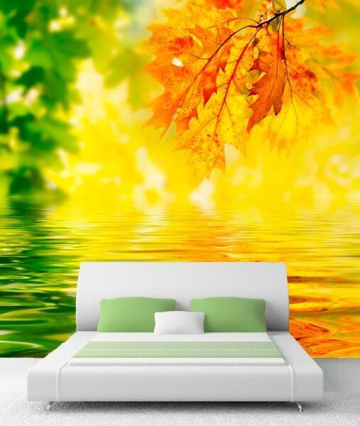 XXL-Poster Fototapete Tapete Vlies Natur Herbst Sonne Indian Summer