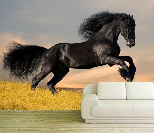 XXL Poster Fototapete Tapete Vlies Pferd in der Wildnis