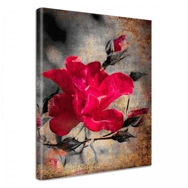 Leinwandbild Gemälde Rose