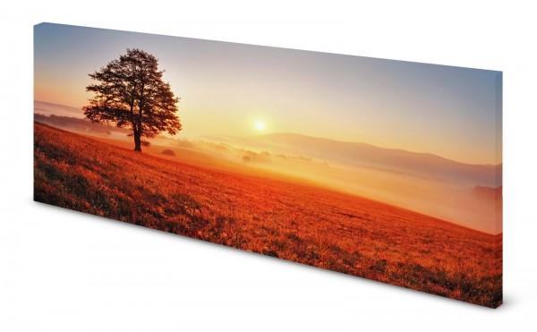 Magnettafel Pinnwand Bild Herbst Sonne Nebel Sonnenaufgang gekantet