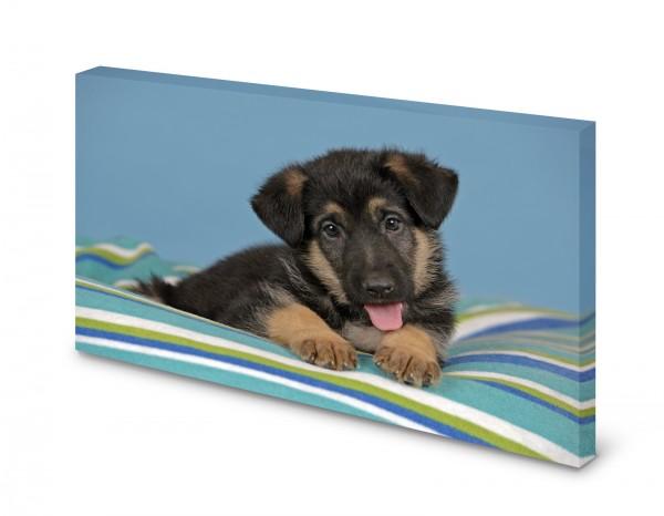 Magnettafel Pinnwand Bild Hund Welpe Hundewelpe gekantet