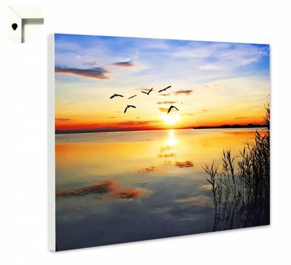 Magnettafel Pinnwand Blumen Natur Sonnenuntergang