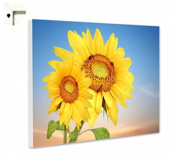Magnettafel Pinnwand Natur Blumen Sonnenblumen Duo