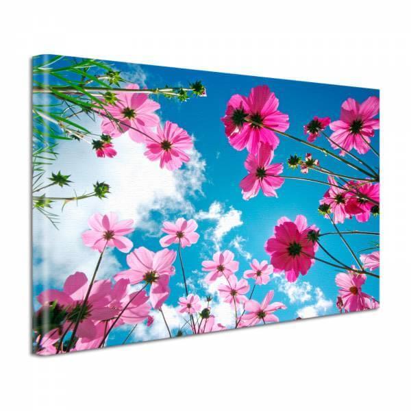 Leinwand Bild edel Blumen im Sommer Himmel