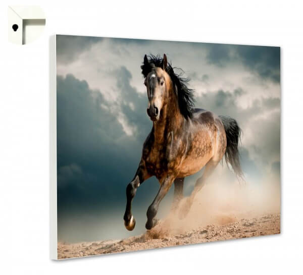 Magnettafel Pinnwand Tiere Pferd Wild Galopp
