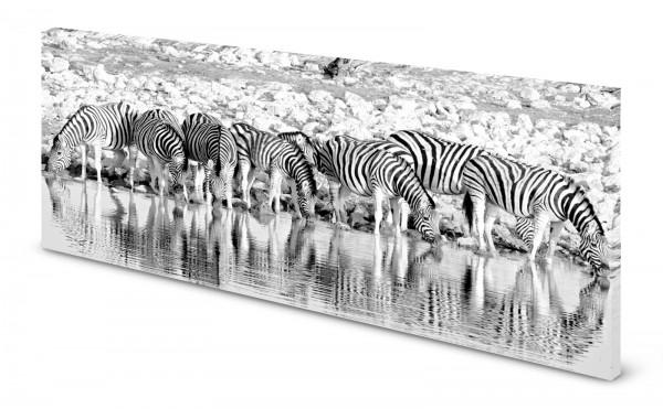 Magnettafel Pinnwand Bild Zebra Zebraherde Wasserloch gekantet