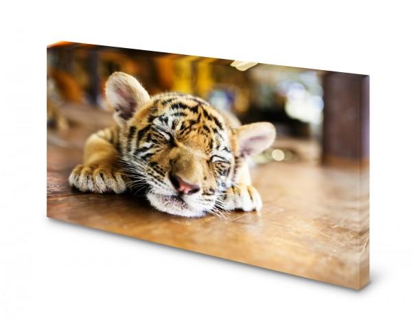 Magnettafel Pinnwand Bild Tiger Tigerbaby XXL gekantet